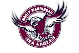 Superhero Sea Eagles changing the universe for kids with cerebral palsy
