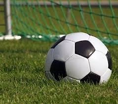 soccer ball on grass with net in the background