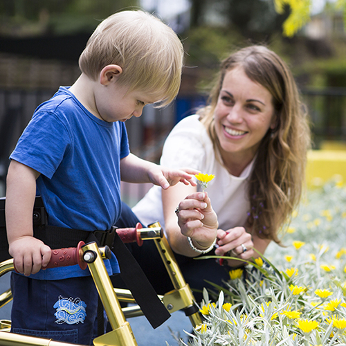 Little boy and carer are picking flowers